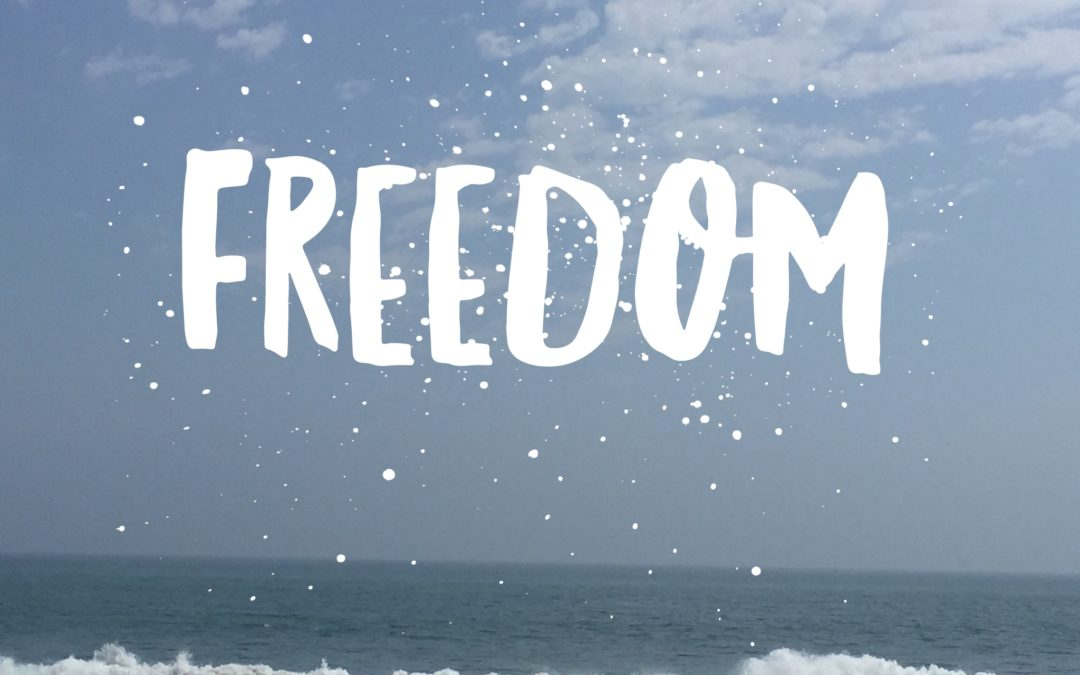 Freedom Is…